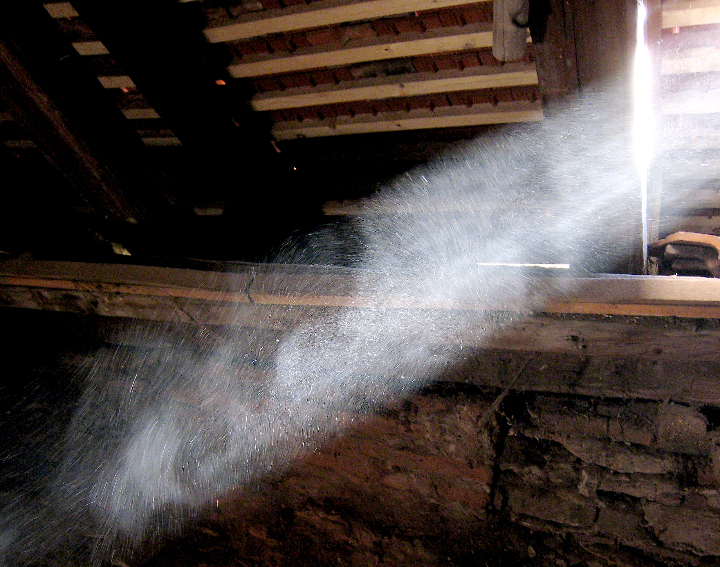 Dust Motes dancing in the sunlight from WiKiMedia commons